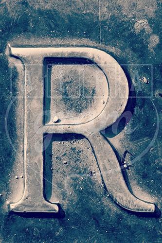 Ideas for letter r for pre-k - Google Search | school | Pinterest ...